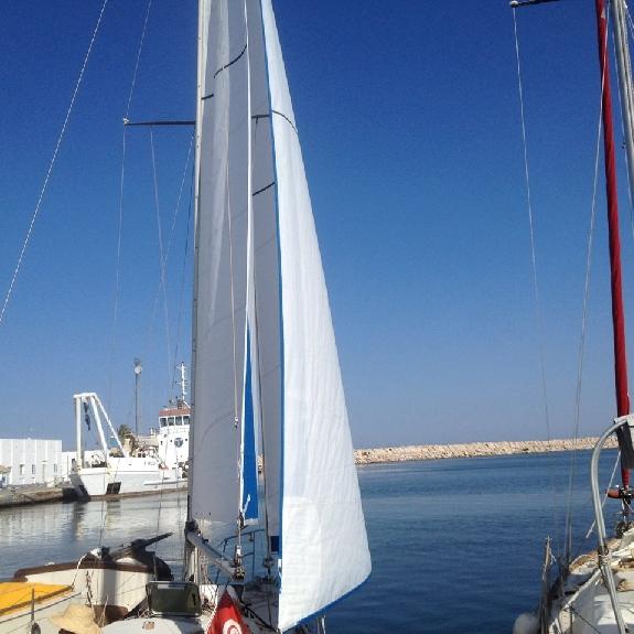 Génois sur enrouleur - Sails Tech